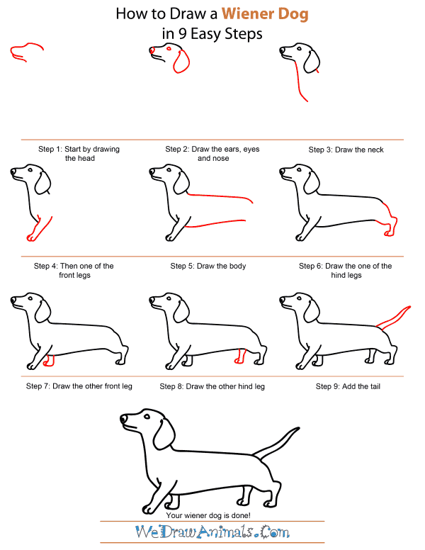 how to draw a goose flying